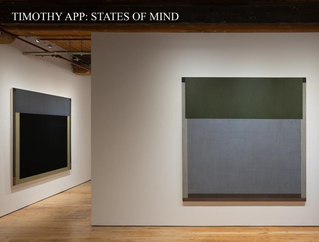 Installation view of Timothy App: States of Mind exhibition in the Goya Contemporary gallery space