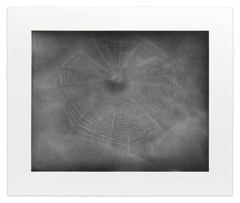 fine art print image of spiderweb by Vija Celmins, Untitled (Web 3), 2002, 1-color etching with aquatint and drypoint, 21 x 24 1/2 inches, edition of 65