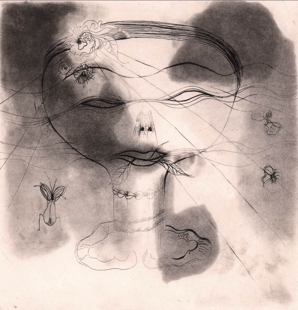 fine art print image of abstract face with insects by Catherine Yarrow
