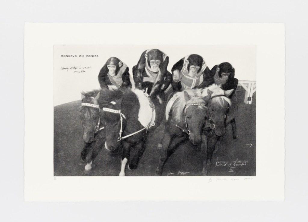 fine art print image of monkeys riding horses by Tacita Dean, Monkeys on Ponies – Ballad of Bonobos III, 2003