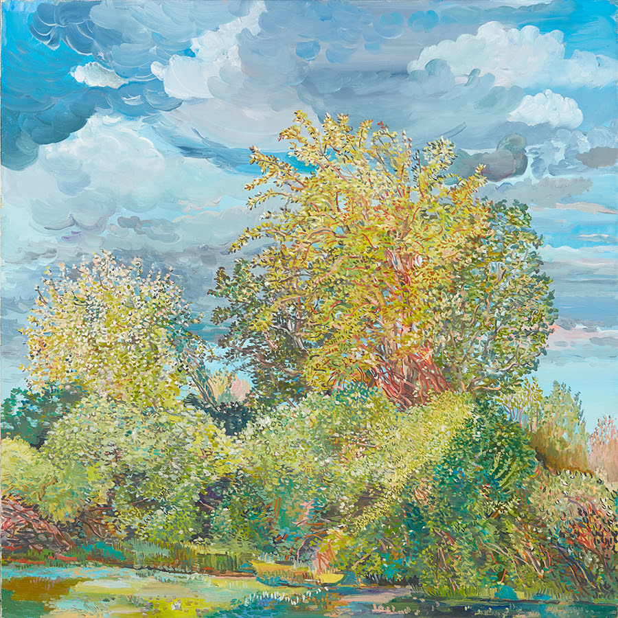 fine art image of a tree filled landscape under a blue sky