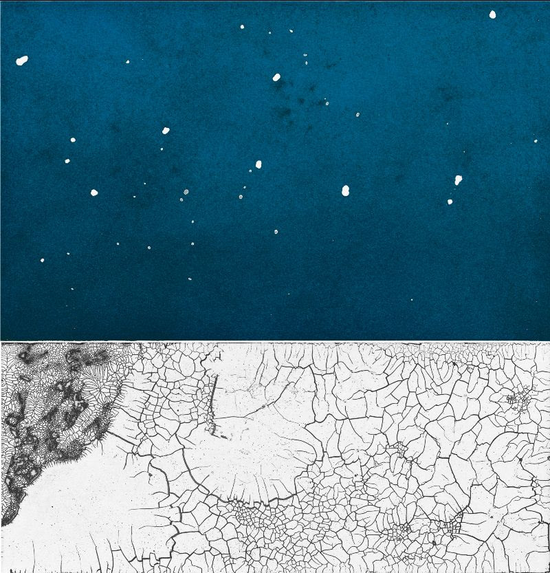 """fine art print image of Leonardo Drew, CPP7, 2015. Aquatint with hard ground etching printed in blue and black. Image size: 13½ x 13""""; paper size: 22½ x 21"""". Edition 15."""